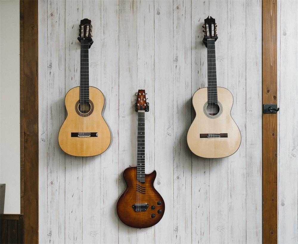 使用ギター